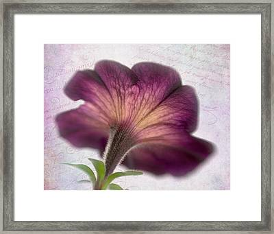 Framed Print featuring the photograph Beneath A Dreamy Petunia by David and Carol Kelly