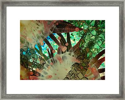 Beneath The Sea Framed Print by Lori Mellen-Pagliaro