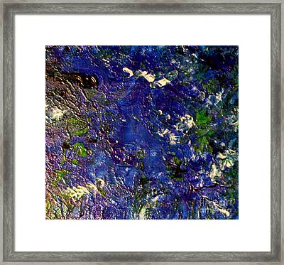 Beneath The Sea Framed Print by Shelly Wiseberg