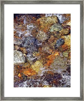 Beneath The Surface Framed Print by Lynda Lehmann
