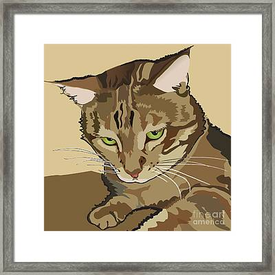 Bengal Kitty Pet Portrait Framed Print