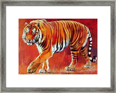 Bengal Tiger  Framed Print by Mark Adlington