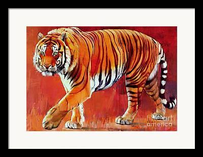 Tiger Framed Prints