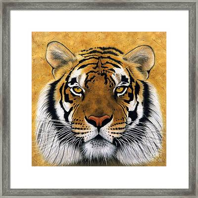 Bengali II Framed Print by Lawrence Supino