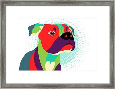 Bennie The Boxer Dog - Wpap Framed Print by Shara Lee