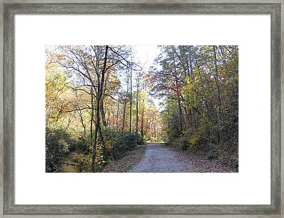 Bent Creek Road Framed Print