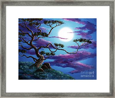 Bent Pine Tree At Moonrise Framed Print by Laura Iverson