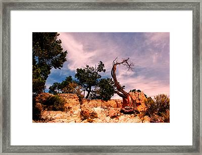 Bent The Grand Canyon Framed Print