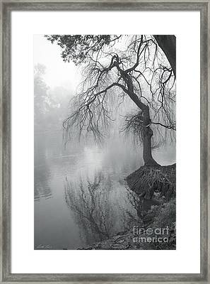 Bent With Gentleness And Time Framed Print by Linda Lees