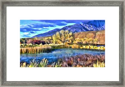 Benton Pond Framed Print