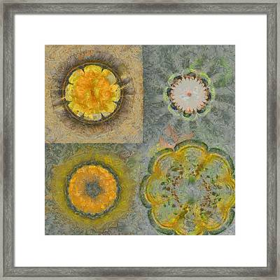 Benzoyl Proportion Flowers  Id 16164-224905-80460 Framed Print