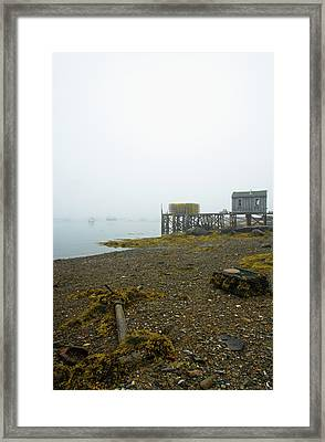 Framed Print featuring the photograph Bernard by Juergen Roth