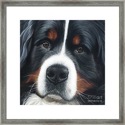 Framed Print featuring the painting Up Close by Donna Mulley