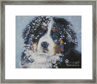 Bernese Mountain Dog Puppy Framed Print by Lee Ann Shepard