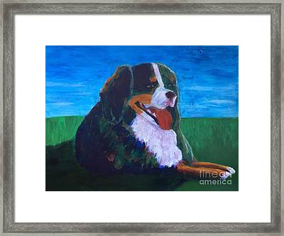 Framed Print featuring the painting Bernese Mtn Dog Resting On The Grass by Donald J Ryker III