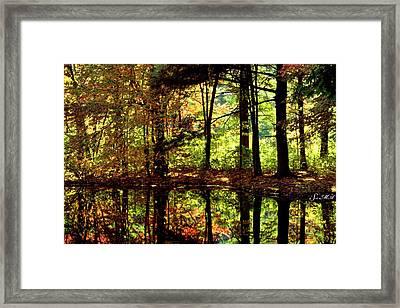 Bernharts Dam Fall 006 Framed Print