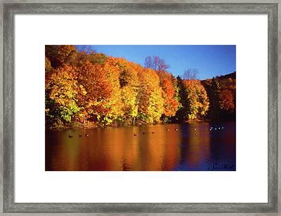 Bernharts Dam Fall 008 Framed Print