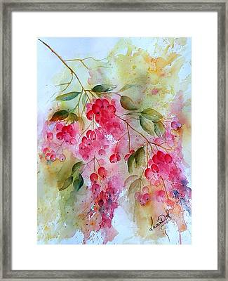 Berries Galore Framed Print by Lucia Del