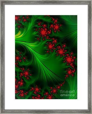 Berries  Framed Print by John Edwards
