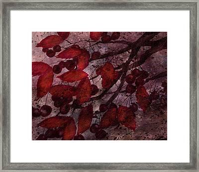 Berries Framed Print by Rachel Christine Nowicki