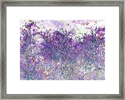 Framed Print featuring the photograph Berry Bush by Ellen O'Reilly