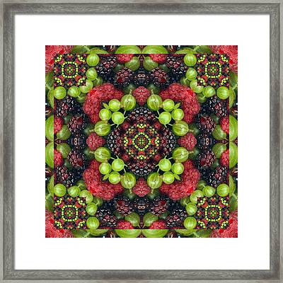 Berry Good Framed Print by Bell And Todd