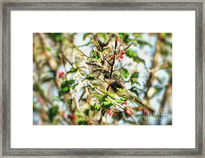 Framed Print featuring the photograph Berry Merry Mockingbird by Kerri Farley