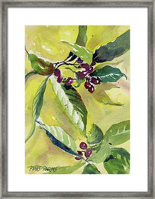 Berry Study Framed Print by Kris Parins
