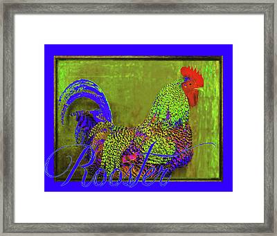 Bert The Rooster Framed Print