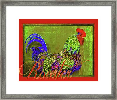 Bert The Rooster Red Framed Print