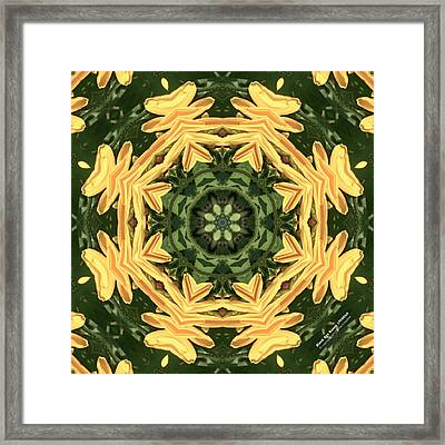Bes17098k8 Framed Print by Brian Gryphon