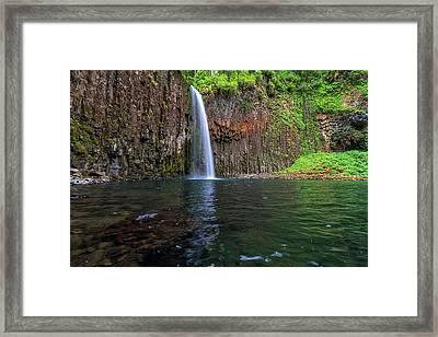 Beside Abiqua Falls In Summer Framed Print by David Gn