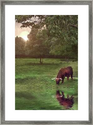 Beside Still Waters Framed Print by Mark Fuller