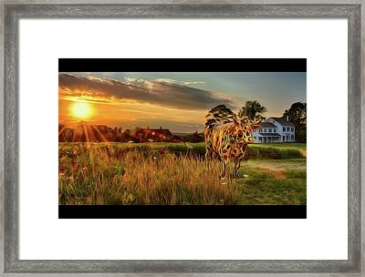 Framed Print featuring the photograph Bessie by Mark Fuller