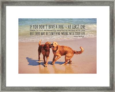 Best Buds Quote Framed Print by JAMART Photography