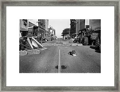 Best Dog Ever Framed Print