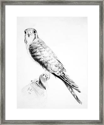 Best Friend Framed Print by Eleonora Perlic