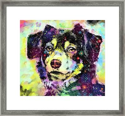 Best Friend Framed Print by Gary Grayson