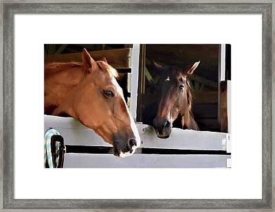 Best Friends Horse Chat Framed Print
