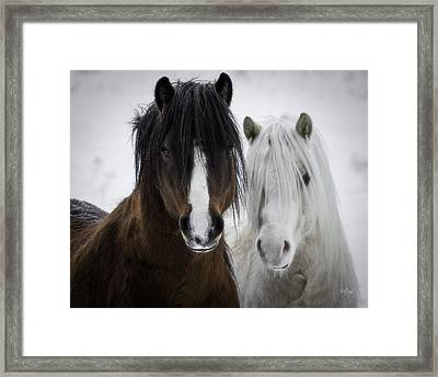 Best Friends II Framed Print by Everet Regal
