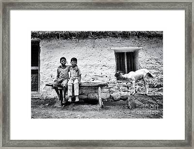 Best Friends Framed Print by Tim Gainey