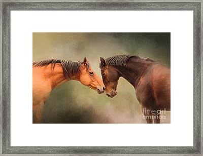 Best Friends - Two Horses Framed Print