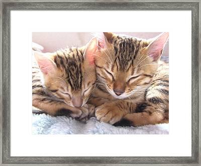 Best Friends Framed Print by Wendy W Sierra