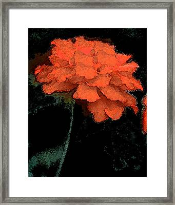 Best Of Show Framed Print
