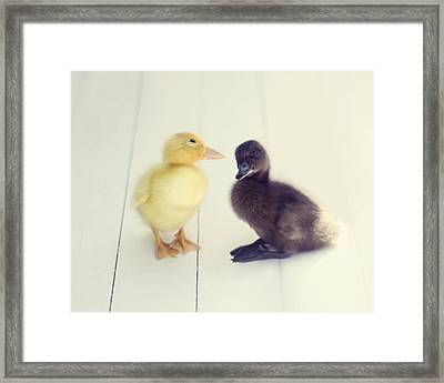 Framed Print featuring the photograph Besties by Amy Tyler