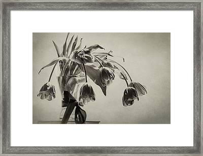 Bestill My Heart  Framed Print by Maggie Terlecki