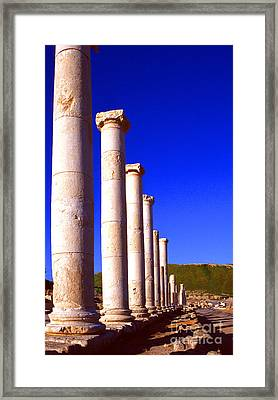 Bet She An Archaeological Site Framed Print by Thomas R Fletcher