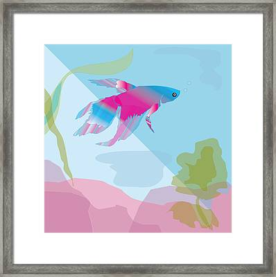 Beta Framed Print by Susan Nelson