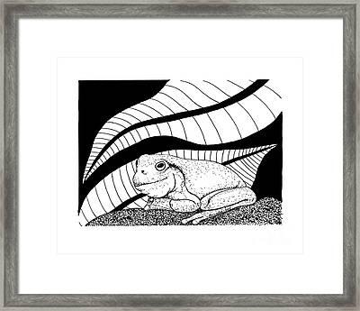 Betsy's Frog Framed Print
