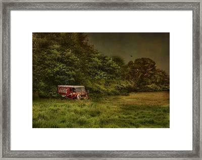 Better Days Framed Print by Robin-Lee Vieira